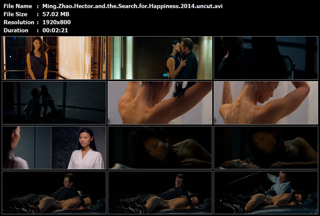 Ming.Zhao.Hector.and.the.Search.for.Happiness.2014.uncut.avi