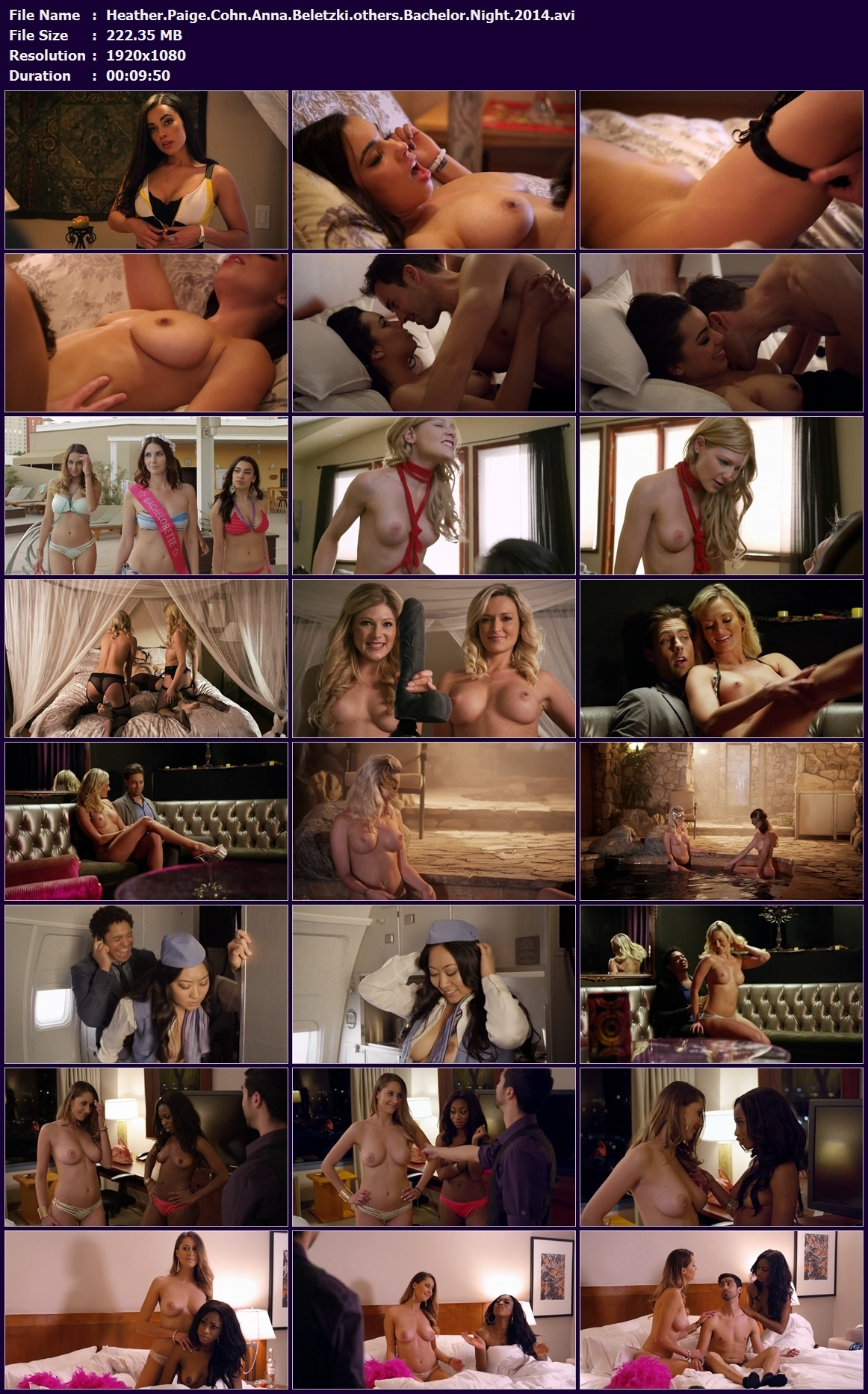 Heather.Paige.Cohn.Anna.Beletzki.others.Bachelor.Night.2014.avi