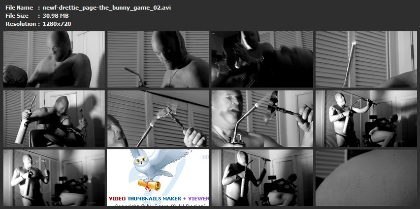 tn-newf-drettie_page-the_bunny_game_02