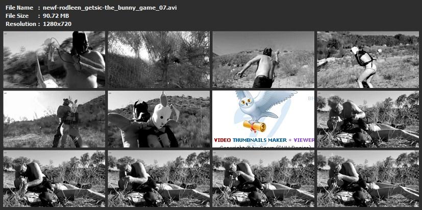 tn-newf-rodleen_getsic-the_bunny_game_07