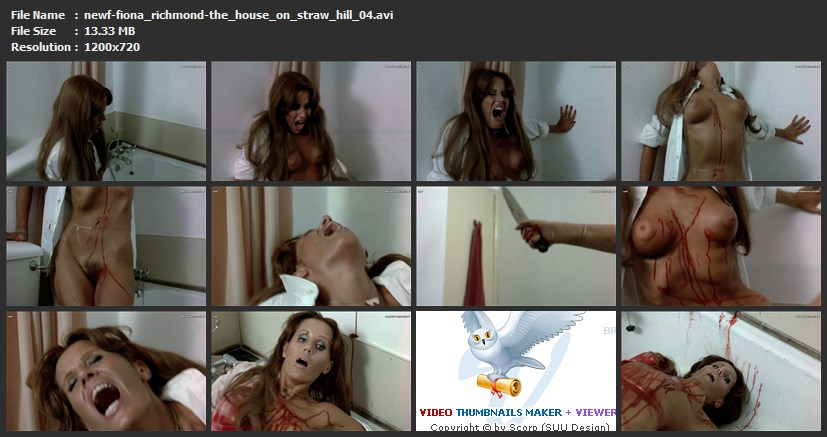 tn-newf-fiona_richmond-the_house_on_straw_hill_04