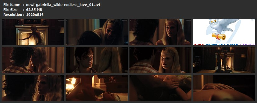 tn-newf-gabriella_wilde-endless_love_01