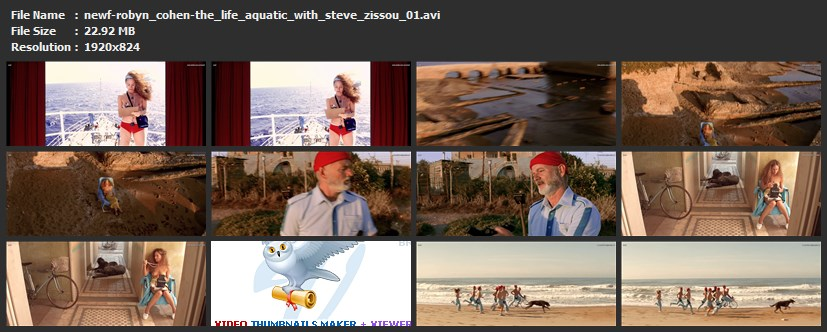 tn-newf-robyn_cohen-the_life_aquatic_with_steve_zissou_01