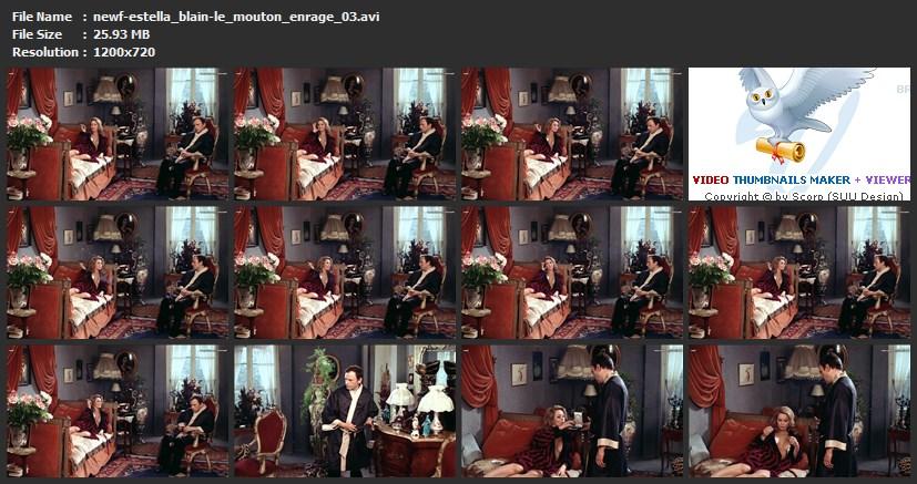 tn-newf-estella_blain-le_mouton_enrage_03