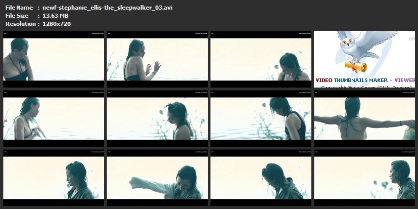 tn-newf-stephanie_ellis-the_sleepwalker_03