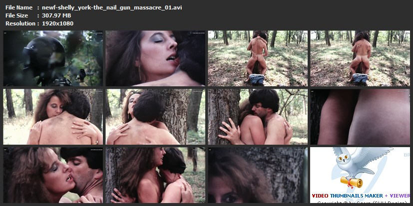 tn-newf-shelly_york-the_nail_gun_massacre_01